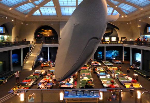 museos6