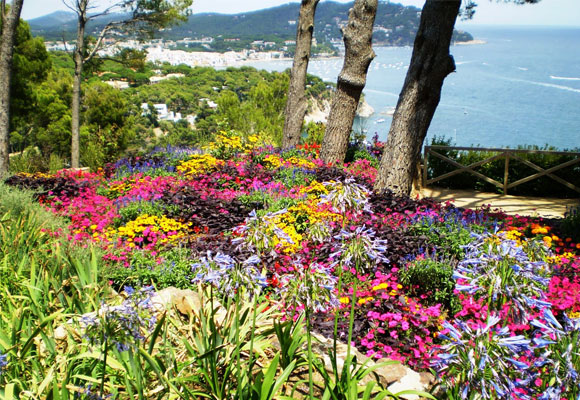 Jardín Botánic