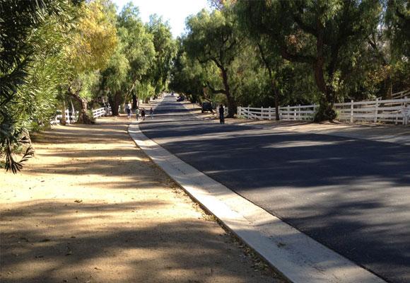 An albero-covered street in Hidden Hills, California.