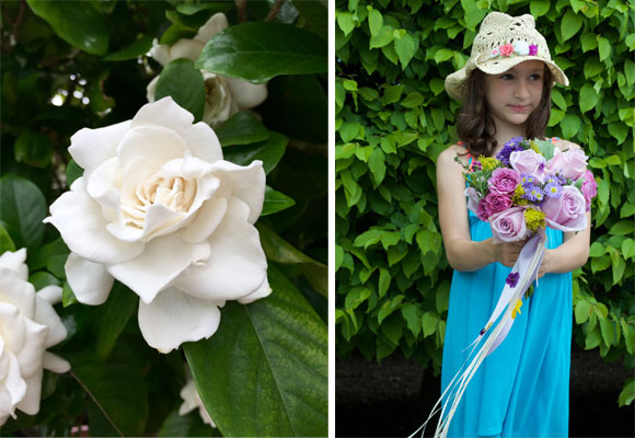 Maravillosa gardenia originaria de China, Japón y Taiwán. Fotografía Sylvia Bustamante. La ganadora del bouquet preparado por la florista Trish O'Sullivan. Fotografía Fernando Gallardo