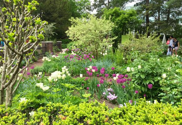 Vista del Jane Watson Irwin Perennial Garden. Fotografía Sylvia Bustamante