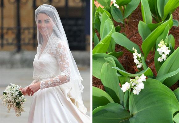 Kate Middelton el día de su boda (foto: Getty). Los lirios del valle remiten a una persona confiable,según la Reina Victoria. Para otros simboliza el retorno de la felicidad. Fotografía Sylvia Bustamante