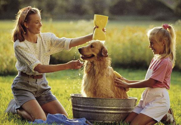 Las mascotas potencian nuestra autoestima
