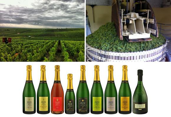 Champagnes Vazart-Coquart 2