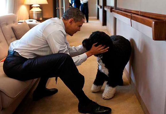 El presidente Obama junto a su perro Bo.