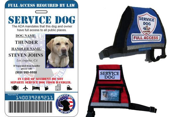 Documentación acreditativa de los perros de asistencia