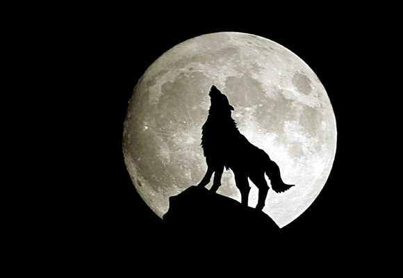 Los hombres lobo, un mito ligado a la luna para el que no hay explicación