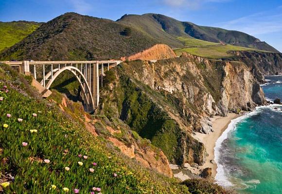 Soler California 1