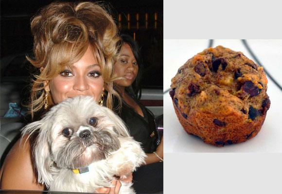 Beyoncé puso a su perro Munchie por su afición a los pastelitos