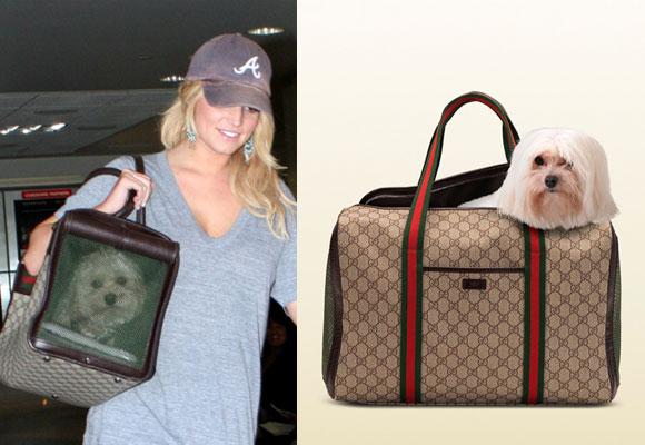 Jessica Simpson confía en el bolso de Gucci para su mascota