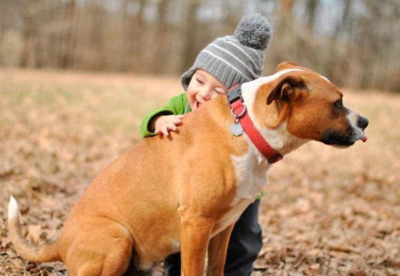 Los niños juegan con los animales y pueden llevar alérgenos a casa