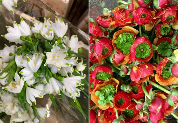 El tour de las flores es el secreto mejor guardado de Nueva York. Si quieres participar escríbeme a sylvia.bustamanteg@gmail