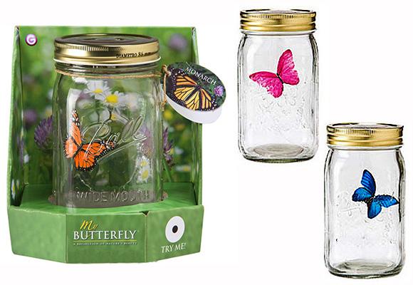 foto 13 y 14 mariposas
