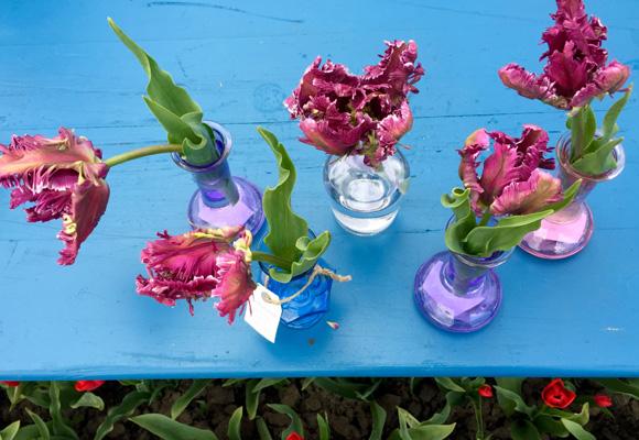 Tulipanes Parrot Mystery que pronto saldrán al mercado en floreros hechos a mano