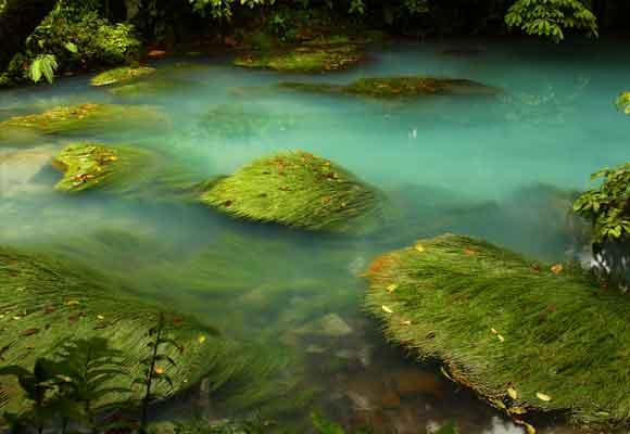 El agua de Río Celeste se tiñe de colores alucinantes