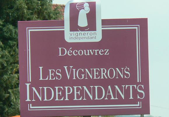 Champagnes de Vigneron. ¡Disfrútalos!