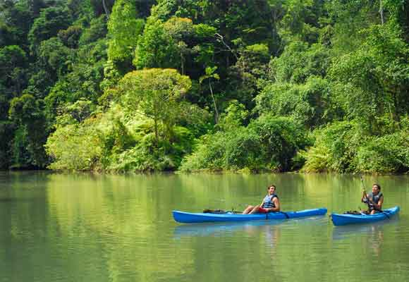 Kayaks en Tortuguero, una forma única de disfrutar el entorno