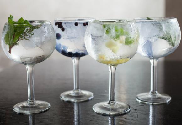 gintonic variados bebida alcohol