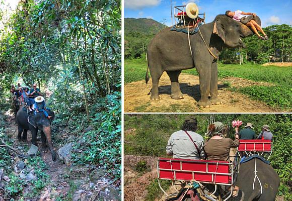 trekking-en-elefante-en-koh-chang